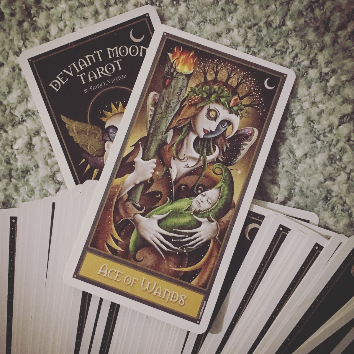 Daily Tarot | 12.03.18 | Ace of Wands